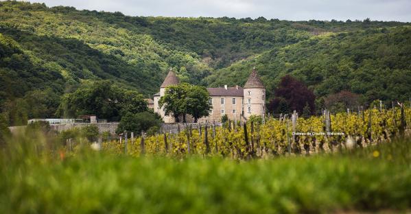 Chateau guillot broux 1